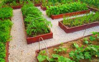 Сколько почвы нужно цветам и декоративным кустарникам