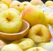 Моченые яблоки антоновка рецепт