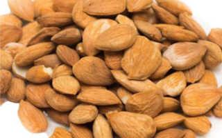 Ядро абрикоса полезные свойства