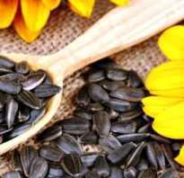 Чем полезны семя подсолнуха