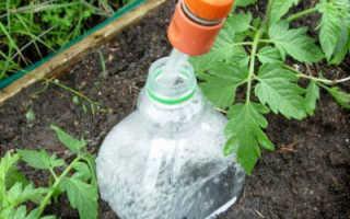 Самодельный капельный полив помидоров