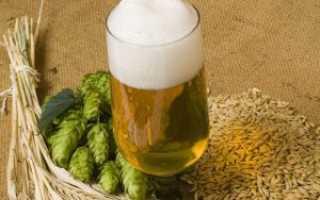 Рецепт браги из пива