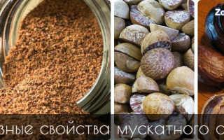 Мускатный орех полезные свойства применение
