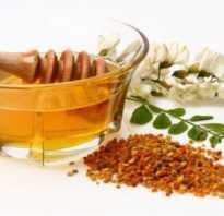 Мед акация полезные свойства и противопоказания