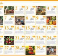 Лунный календарь садовода и огородника на сентябрь 2020 года