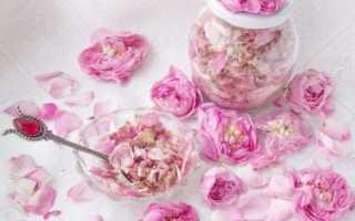 Лепестки розы полезные свойства и противопоказания