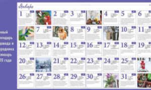 Лунный календарь садовода и огородника на январь 2020 года