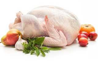 Полезно ли мясо индейки