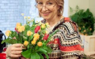 Пеларгония выращивание и уход в домашних условиях