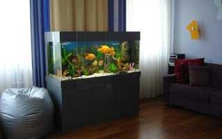 Как подготовить аквариум