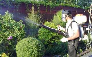 Меры борьбы с насекомыми вредителями
