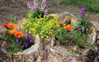 Шагов которые помогут обновить цветник и сделать его красивым