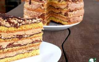 Торт белочка рецепт