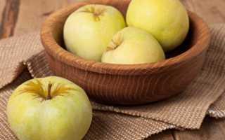 Яблоки антоновка полезные свойства и противопоказания